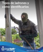 Tipos de ladrones y cómo identificarlos